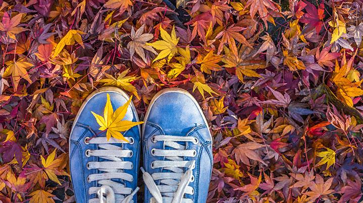 Top 5 autumn health tips