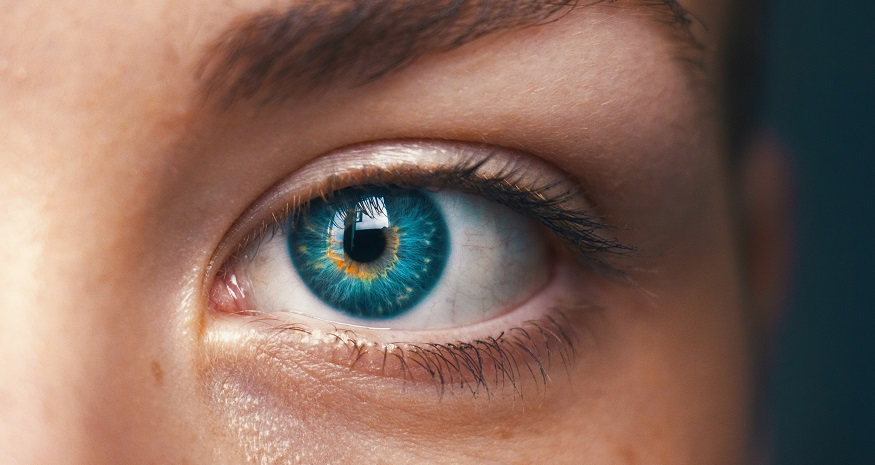 A Guide to Glaucoma