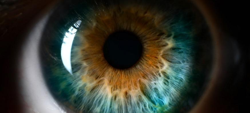 What is colour vision deficiency (colour blindness)?