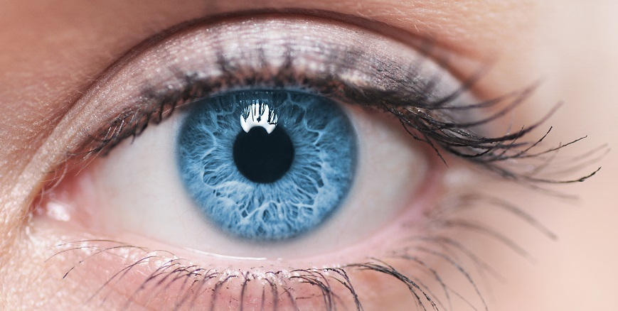 A Guide to Diabetic Macular Edema