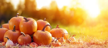 What can pumpkins do for your eyes?