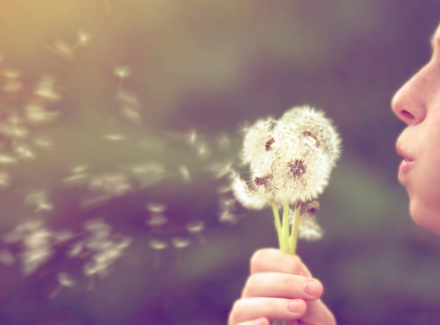 6 handy tips for coping with hay fever