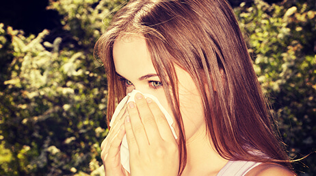 hayfever allergy to polle