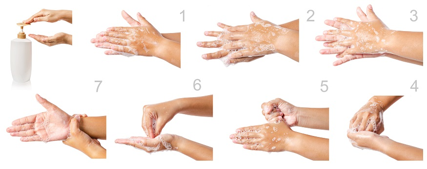 a diagram showing how to properly wash your hands