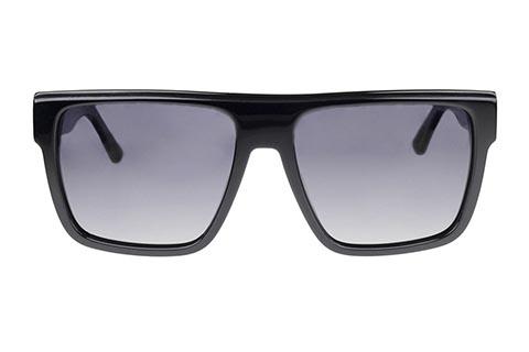 FGC Hayden C1 Black Polarised