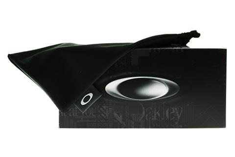 Oakley Holbrook OO9102-O2 Dark Ink Fade Prizm Black Polarised